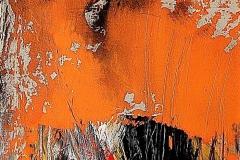 20- Serie degli aranci IV - 2006 -  t.mista su tavola - 45x70cm