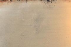 19-Meditazione VI - 2009 - T. mista su tela - 80x100 cm