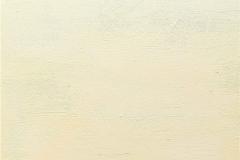 2- Meditazione - 2015 - T. mista su tavola - 45x70 cm